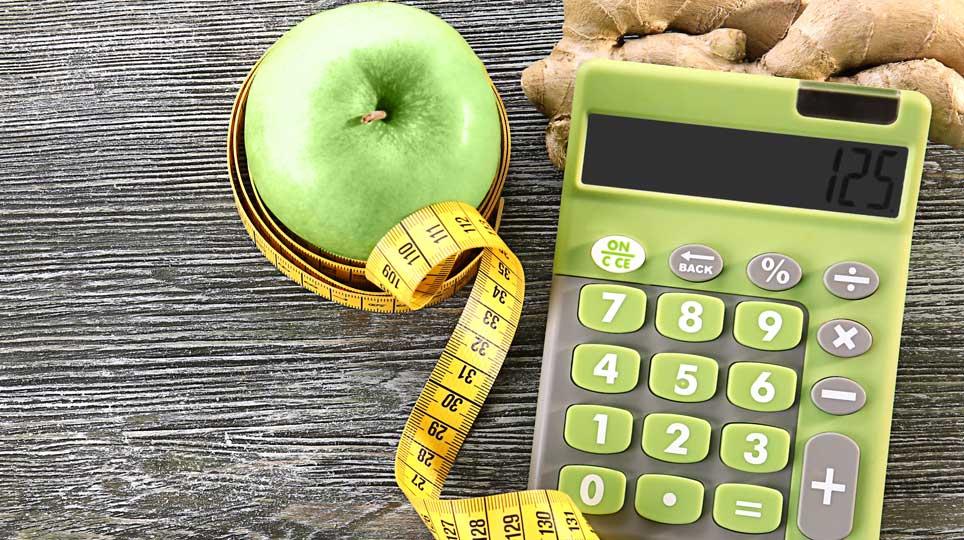 Ernährungsplan » kostenloser Download
