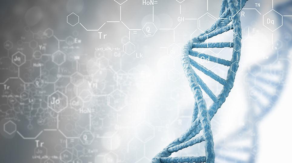 Teil 4 Wie viel Schuld hat Deine Genetik